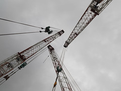 crane traffic