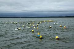 "I Mityng Triathlonowy - Nowe Warpno 2017 (107) • <a style=""font-size:0.8em;"" href=""http://www.flickr.com/photos/158188424@N04/36862070145/"" target=""_blank"">View on Flickr</a>"