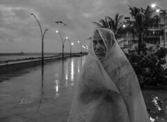 Solitude (thiparthi987) Tags: sonyalpha sonyindia sonya7 sony portraits street blackandwhite beautiful beach monsoon rain wallpaper pro professional print canvas hd indiapictures india french indofrench solitude lovely zeiss best photography dslr dslrphotography mirrorless expressive
