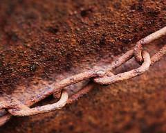 Rust (Helena Johansson 71) Tags: rust rusty macro macromondays nikond5500 d5500 nikon chain object everydayobject
