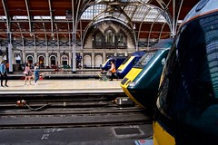 Paddington Station (Andy Burton Oz) Tags: flickrexport england paddingtonstation uk greatwesternrailway nikon andyburton networkrail andyburtonoz train burtonandy london nikond500 2017 aperture36 westminster afsdxzoomnikkor1855mmf3556gedii