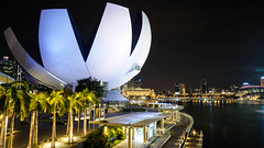 Marina Bay (dgarcia_) Tags: singapur singapore marina bay gardens by leds lights city sky scratcher rascacielos laser flower dome helix bridge noche night long exposure larga exposicion