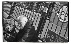 A DOGS LIFE (StockCarPete) Tags: streets londonstreets homeless dog hat smoking uk bw tear railings