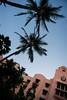 Hawaii-55 (emilyanntruong) Tags: royal hawaiian waikiki royalhawaiian pinkpalace