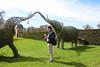 Under the trunks (Canadian Pacific) Tags: england britain great uk british english unitedkingdon hertfordshire hatfield house palace manor stately home al9 jacobean history 2016aimg1624 garden park friend michiel