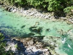 Pristine river, Slovenia!