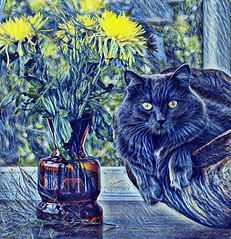 Cat n Flowers (Bob Smerecki) Tags: smackman snapnpiks robert bob smerecki sports art digital artwork paintings illustrations graphics oils pastels pencil sketchings drawings virtual painter 6 watercolors smart photo editor colorization akvis sketch drawing concept designs gmx photopainter 28 draw hollywood walk fame high contrast images movie stars signatures autographs portraits people celebrities vintage today metamorphasis 002 abstract melting canvas baseball cards picture collage jixipix fauvism infrared photography colors negative color palette seeds university michigan football ncaa mosaic