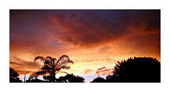 Sunset Sky (BlueisCoool) Tags: flickr foto photo image capture picture photography sony cybershot dscw3000 air pink summer nature sky cloud outdoor outdoors dusk serene dark pretty beautiful vivid color sunset twilight florida skyporn cloudporn twilightsky largoflorida place