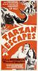 Tarzan Escapes (1936, USA) - 05 (kocojim) Tags: maureenosullivan illustrated kocojim poster johnnyweissmuller publishing advertising film illustration motionpicture movieposter movie