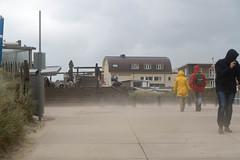 erster Herbststurm (krieger_horst) Tags: niederlande bergenaanzee sand sturm gelb rot