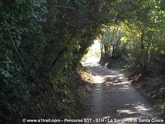 S1T-S1trail-la-corsa-della-bora-anello-sorgente-santa-croce__0044