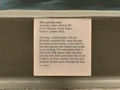 London 2016 (jericl cat) Tags: british museum 2016 london assyrian iraq mesopotamia assyria palace