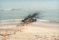 Stone Jetty (KD's_Fotos) Tags: nikon d750 nikkor85mmf18d marthasvineyard oakbluffs stonejetty beach