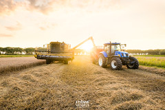 Wheat harvest with the combine harvesters (Fotografie Etienne Hessels) Tags: 2017 a99 etienne fotografie fotografieetiennehessels hessels sony farmer harvest combine arkel landscape dutch holland nieuwholland tamron tamron1530 land oogst giessenlanden zuidholland sunset yellow tarwe sonyalpha sonyimages nederland europe boer ngc national geographic group