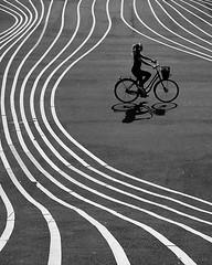 Choose your own path (Birdhouse camper) Tags: copenhagen denmark lines bicycle street silhouette blackandwhite blackwhite bw fujifilm fuji fujixt2