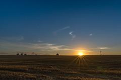 Sunrise - Starkow (Duke.Box) Tags: sunrise nikond600 nikon sonnenaufgang feld acker tamron tamron1530mmf28 himmel landschaft vollformat kleinbild ultraweitwinkel blendenstern sonne baum