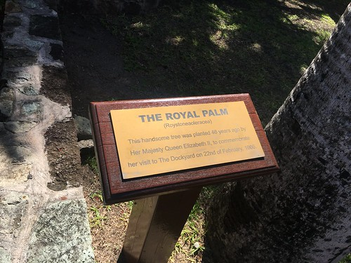 Plaque commemorating the planting of a palm tree by HM The Queen