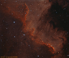 NGC7000 - Cygnus Wall (CSky65) Tags: ngc7000 sky objects milky way universe night astronomy cygnus nebulae nebula stjoseph sjo sgnc sugar grove nature center phd ccdstack photoshop images plus st8300m sbig ritchie chretien astrotech nsa fvas tcaa astroimaging astrophotografy season starry skies 7000 cygnuswall golfofmexico northamericanebula na illinois narrow band ngc astrometrydotnet:id=nova2225702 astrometrydotnet:status=solved