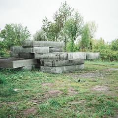 210 (Krzysztof Wladyka) Tags: wladyka square green outdoor grass sonnartfe2835 trees bushes concrete frames grave frame