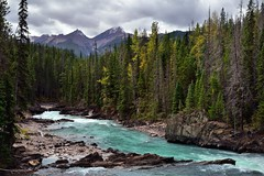 While Everyone Else Was Looking Upstream to Natural Bridge... (Yoho National Park) (thor_mark ) Tags: nikond800e day3 triptoalbertaandbritishcolumbia kickinghorseriver naturalbridge lookingsw mountking vanhornerange capturenx2edited colorefexpro yohonationalpark outside nature landscape overcast rockymountains canadianrockies mountains mountainsindistance mountainsoffindistance hillsides hillsideoftrees evergreens trees hillsideofrocksandboulders boulders largerocks naturalbridgefalls river emeraldlakeroadarea alongemeraldlakeroad walkingaroundnaturalbridge centralmainranges southwestcentralparkranges canvas portfolio project365 britishcolumbia canada