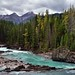 While+Everyone+Else+Was+Looking+Upstream+to+Natural+Bridge...+%28Yoho+National+Park%29