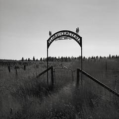 Cemetery Gate, Flora, Oregon (austin granger) Tags: cemetery gate flora oregon grass iron death time impermanence rural square film gf670
