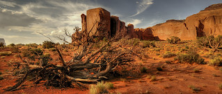 in the Monument Valley