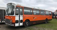Bury Leopard (BiggestWoo) Tags: gm buses gmt leyland leopard coach manchester willowbrook heaton park translancs rally orange