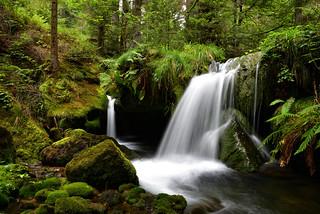 La Sauteuse - Cascade sur le Rabodeau - Vosges