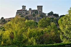 Fortaleza de Monterrey (Ourense) (Jose Manuel Cano) Tags: fortaleza castillo monterrey orense ourense españa spain castle nikond5100 galicia