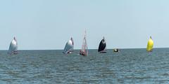 2017-07-30_Keith-Levit-Sailing_Gimli071.jpg (Keith Levit) Tags: keithlevitphotography gimli gimliyachtclub sailingdoublehanded29er canadasummergames interlake manitobs winnipeg sailing