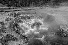 Tangled Creek off of Firehole Lake Drive (Yellowstone NP) (Kᵉⁿ Lᵃⁿᵉ) Tags: geo:lat=4454431480 geo:lon=11078772068 geotagged westthumb adventure bw baw blackwhite blackandwhite bnw creek exploring fireholelakedrive fireholelakeroad geothermallandscape httpsenwikipediaorgwikiyellowstonenationalpark httpswwwnpsgovyell landscape monochrome nationalpark nationalparkservice naturalwonder nature people steam tangledcreek thermalfeature tourism touristattraction travel travelblog travelphotography travelingadventures usnationalpark usnationalparkservice unitedstates unitedstatesnationalpark usa water watermotion whiteblack worldadventures worldtravel worldsfirstnationalpark wy wyoming yellowstone yellowstonenationalpark yellowstonenp ynp