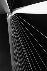 Erasmusbridge / Erasmusbrug (jo.misere) Tags: rotterdam 2014 brug bridge erasmus vanberkel bw zw pov overhead ngc