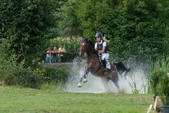 A9903678_s (AndiP66) Tags: springen derby aesch bl baselland 2017 juni june 13august2017 pferd horse schweiz switzerland kantonbaselland cantonofbaselland concours wettbewerb horsejumping springreiten pferdespringen equestrian sports pferdesport sport sony alpha sonyalpha 99markii 99ii 99m2 a99ii ilca99m2 slta99ii sony70400mm f456 sony70400mmf456gssmii sal70400g2 amount andreaspeters