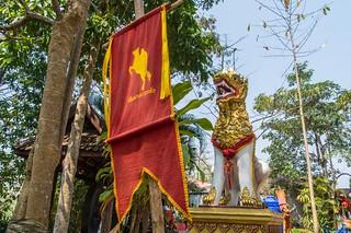 mae fah luang - thailande 27