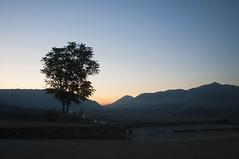 Gjirokastër, Albania (Tokil) Tags: gjirokastër albania balkans east trip colors oldtown village historical ancient sunset tree mountains alps landscape nature shqipëri shqipëria nikond90