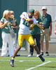 Randell's Hands - 2017 (grogley) Tags: 2017 greenbay packers wisconsin nfl football randallcobb featured