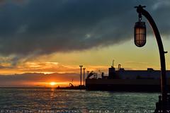 Morning at Waterfront (T Ξ Ξ J Ξ - OFF for Egypt) Tags: newzealand auckland d750 nikkor teeje nikon2470mmf28 lbwarmingcpl waterfront beach morning