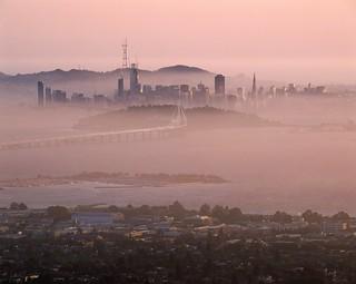 The Rosy Mist Affair