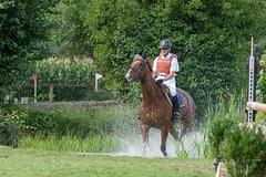 A9903642_s (AndiP66) Tags: springen derby aesch bl baselland 2017 juni june 13august2017 pferd horse schweiz switzerland kantonbaselland cantonofbaselland concours wettbewerb horsejumping springreiten pferdespringen equestrian sports pferdesport sport sony alpha sonyalpha 99markii 99ii 99m2 a99ii ilca99m2 slta99ii sony70400mm f456 sony70400mmf456gssmii sal70400g2 amount andreaspeters