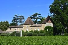 France 2017 - Château Carbonnieux - Pessac-Léognan (philippebeenne) Tags: france bordeaux pessacléognan grandcruclassé vins wine graves chateau