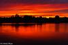 sunset on the Willamette (Tri Minh) Tags: salemor salem oregon willametteriver sunset silhouette