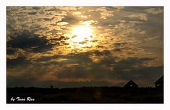 SHF_6561_Sunset (Tuan Râu) Tags: 1dmarkiii 14mm 100mm 135mm 1d 1dx 2470mm 2017 50mm 70200mm tuấnrâu2017 canon canon1d canoneos1dmarkiii canoneos1dx sunset hoànghôn cloud mây quebec canada landscape phongcảnh tuanrau tuan râu httpswwwfacebookcomrautuan71 rays