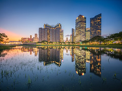 Marina Reflections (Scintt) Tags: singapore marina bay mbs cbd light glow epic dramatic travel clouds reflections water ripples towers skyscrapers city cityscape skyline modern urban offices hotels exclusive central business district financial centre yellow golden vibrant natural colours clear blue scintillation scintt jon chiang photography stitched sky swamp lake pond mirror symmetry mbfc trees nature landscape filter wide angle surreal panorama sony a7rii canon 17mm tse tilt shift sunset evening grass dusk twilight long exposure slow shutter river