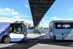 The geometry and rhythm of lunch (geemuses) Tags: sydney sydneyharbour sydneyharbourbridge water sea bridge architecture bus buses person man people blue structure street streetphoto path walking movement landscape buildings skyline nsw australia