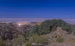 Above The Clouds - Cedars and Church of God - Lebanon (ramzisemrani) Tags: lebanon landscape lights lebanonmountain landscapes livelovelebanon lebanonmountains love liban lord angel arz above sky dreams green forest fullmoon god night nightshot fog tags home heaven jaj jbeil jesus ramzisemrani cedars clouds cedarsofgod cedarsforest church camping cedras village valley view byblos nature mountains maronites middleeast mountain montliban walking wildlifelebanon earth tree trees outdoor oldtree peace photos