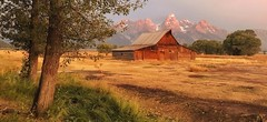 Alpenglow at the barn (Jeff Clow) Tags: daybreak dawn grandtetonnationalpark alpenglow jacksonhole mormonrow jeffrclow moultonbarn wyoming usa