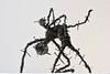 Birth B&W (Vortex67) Tags: monster dark sombre sculpture recyclage recycling art artistic monstre black noir blanc white