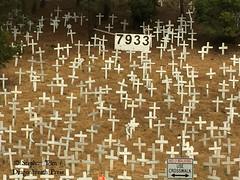 IMG_4064_Iraq war dead memorial in Lafayette CA