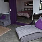 suite mata (1)